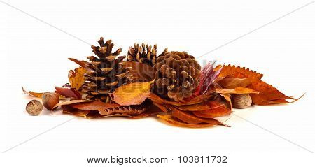 Pile of autumn leaves, pine cones and nuts over white