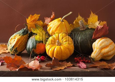 decorative pumpkins and autumn leaves for halloween