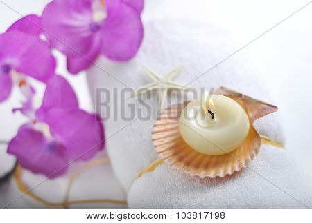 Burning candle with natural sea-shells placed on white towel - spa object