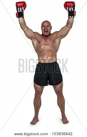 Portrait of winning boxer with arms raised against white background
