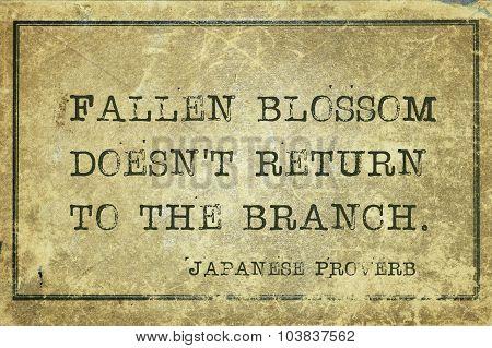 Fallen Blossom Jp