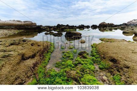 Mossy rock at beach circa august in Binh Ba Island, VietNam