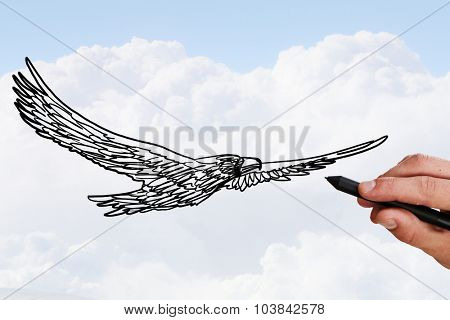 Person drawing flying eagle bird on sky background