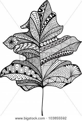 Doodle textured leaf background. Hand drawn illustration.