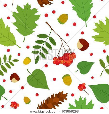 Forest seamless pattern with rowan berries, leaves, acorn, chestnut, pine cone. Vector set. White ba