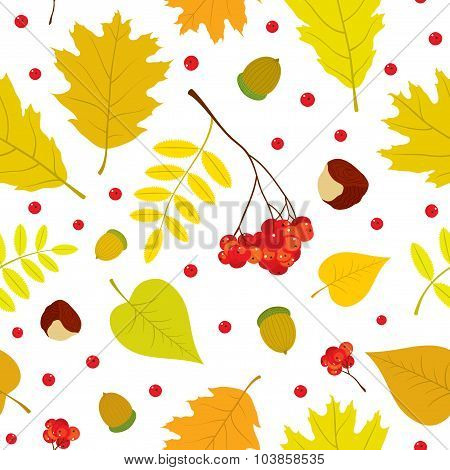 Autumn seamless pattern with rowan berries, leaves, acorn, chestnut. Vector set. White background.