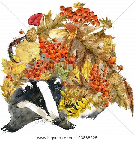 Forest animal badger Autumn nature colorful leaves background , fruit, berries, mushrooms, yellow le
