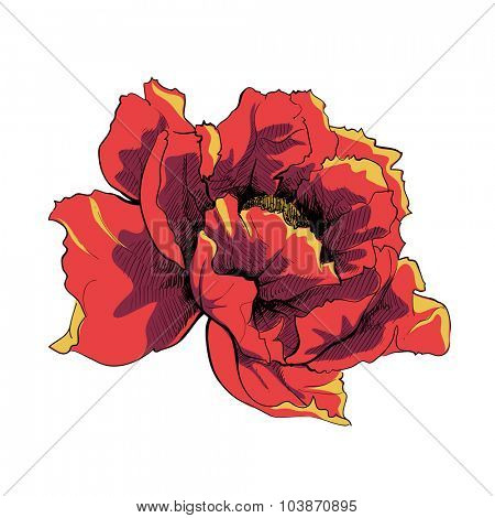 Bright vector flower on white background