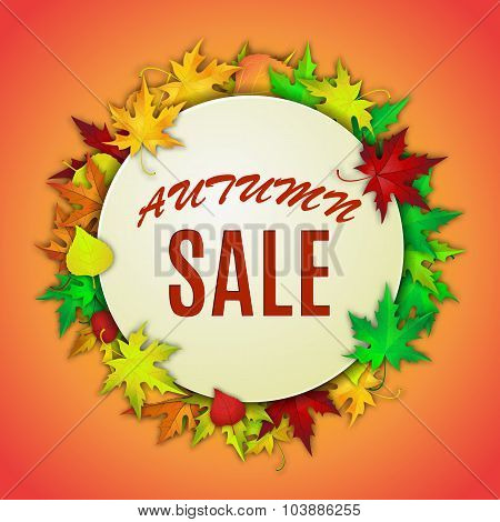 Autumn sale,