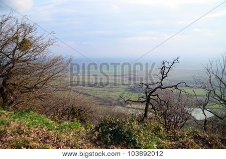 Top view of vineyards of Alazani valley in Kakheti Region