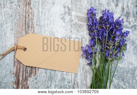 Lavender Flowers With Tag