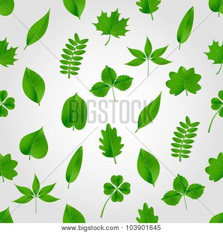 Natural Green Beautiful Leaves Icon Seamless Pattern Eps10
