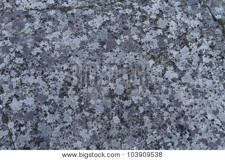 Surface Of A Granite Stone
