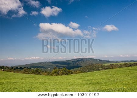 Green Pasture And Forest Under Blue Sky With Clouds