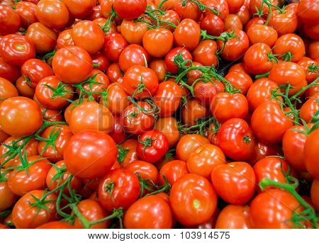 Tomatoes on the supermarket display