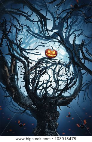Mystic Tree With Thorns And Pumpkin With Bats