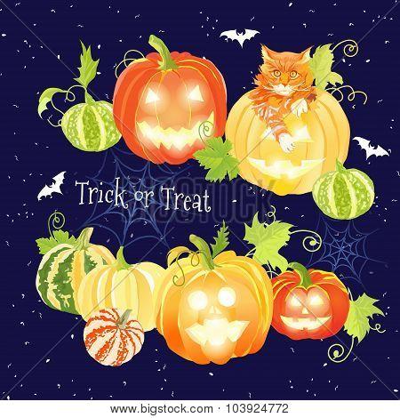 Halloween Navy Design Set With Pumpkins, Cat, Bats And Spider Webs