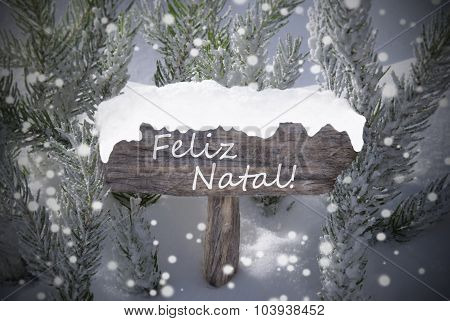 Sign Snowflakes Fir Tree Feliz Natal Mean Merry Christmas