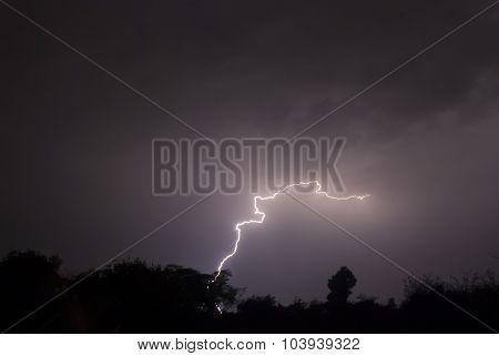 Snake Lightning