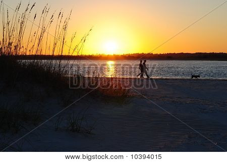 couple walking dog sunset