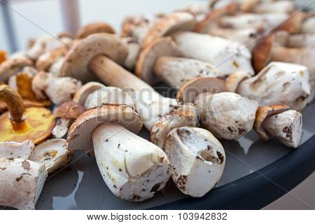 Porcini mushrooms on the table (Boletus edulis or cep)