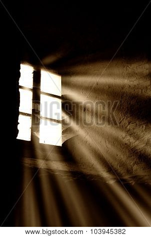 Light From The Window