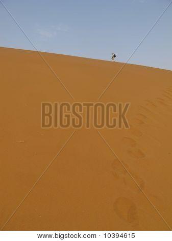 Sand Dune & Oli Namib-Nauktuft National Park Namibia