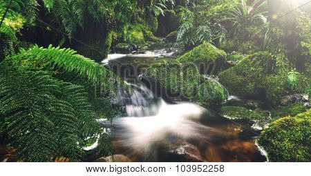 Nature Outdoors Waterfall Tranquil Scene Concept
