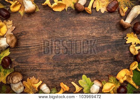 Thanksgiving autumn background with arrangement of colorful fall leaves and mushrooms