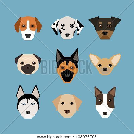Dogs in flat style
