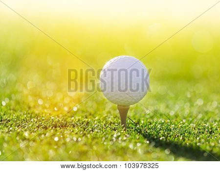 Close-up of golf ball.