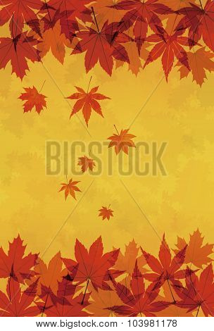 Autumn Maple Leaves Background Illustration