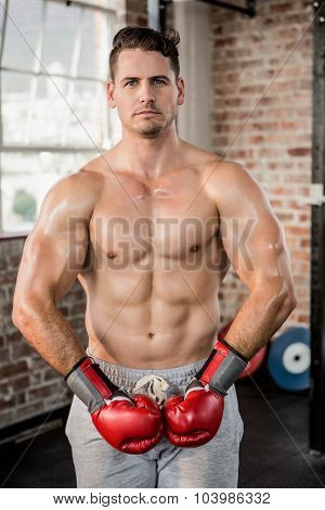 Portrait of a muscular man wearing red boxing gloves at the gym