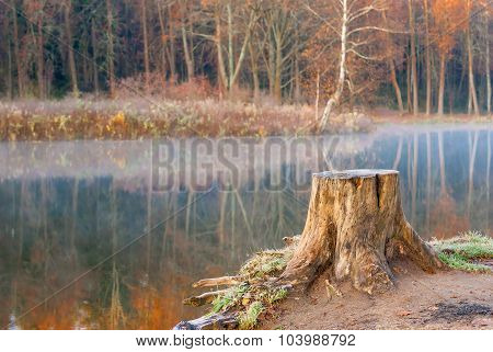 Lonely Old Tree Stump Near The Lake Autumn Landscape