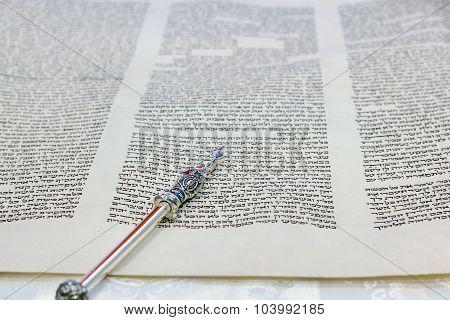 Torah Parchment
