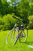 pic of close-up  - a close up view of a bicycle at sunny park - JPG