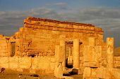 stock photo of euphrat  - early morning at ancient palmyra in syria - JPG