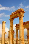 image of euphrat  - beautiful columns at ancient palmyra in syria - JPG