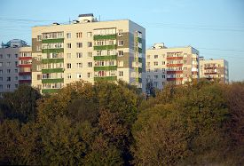 stock photo of overhauling  - Houses in a residential district after major overhaul of deep trees in early autumn day - JPG
