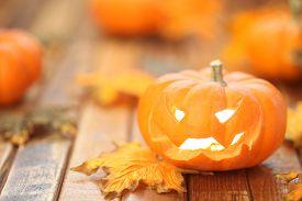 picture of jack-o-laterns-jack-o-latern  - Halloween jack o - JPG