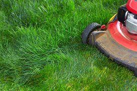 foto of grass-cutter  - Lawn mower cutting green grass - JPG