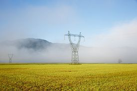 image of electricity pylon  - Big electricity high voltage pylons with power lines on a yellow grass in a foggy morning - JPG