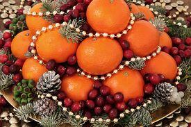picture of greenery  - Christmas satsuma orange and cranberry fruit - JPG