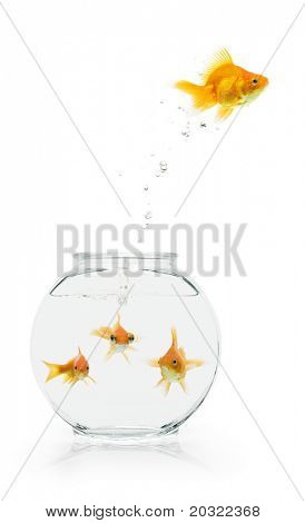 A goldfish leaping from a shared, bare fishbowl.