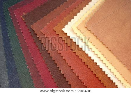 Leather Examples