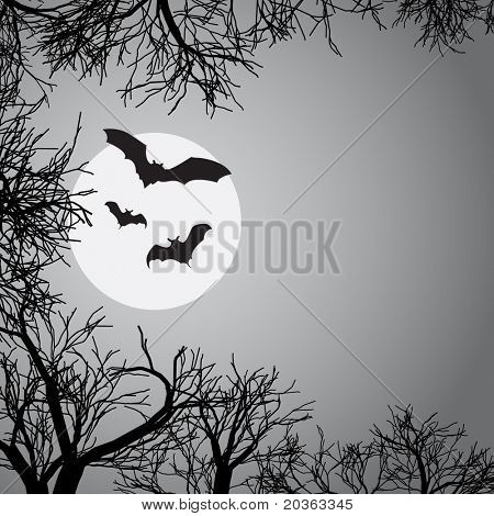 Moon light background with bats