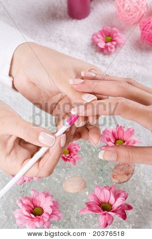 female hands at the manicure treatment