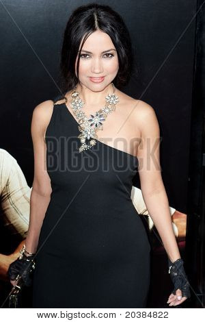 HOLLYWOOD, CA. - DEC 7: Luisa Diaz arrives at the Los Angeles premiere of The Fighter at Grauman's Chinese Theatre on Dec. 7, 2010 in Hollywood, California.