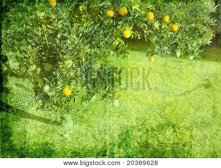 Grunge lemon tree background on paper texture burnt order