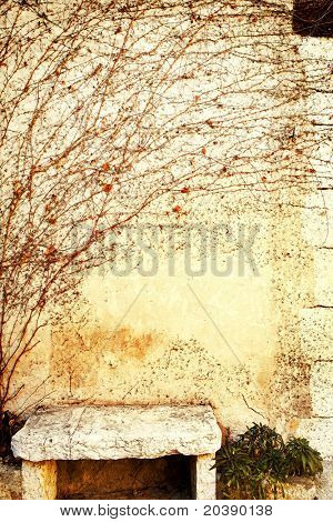 Grunge wall with dry vine and orange leaves and a stone bench